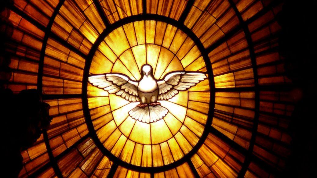 Vatican Dove